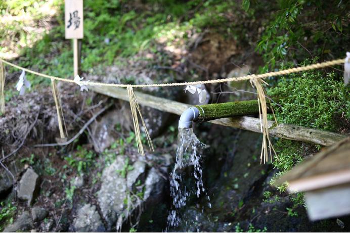 神泉坂根水